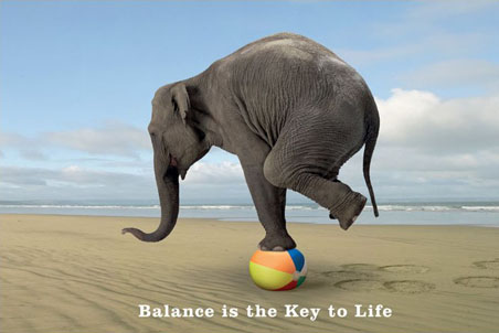Balancing Act | totallytawn